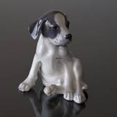Smooth-haired Terrier sitting looking funny, Royal Copenhagen dog figurine