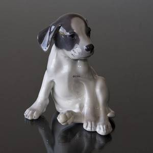 Smooth-haired Terrier sitting looking funny, Royal Copenhagen dog figurine No. 259 | No. 1020051 | Alt. R259 | DPH Trading