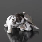 Pointer Puppies, Royal Copenhagen dog figurine no. 453