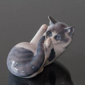 Cat, playing. Royal Copenhagen figurine no. 727 | No. 1020071 | Alt. R727 | DPH Trading