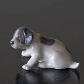 Pointer Puppy, Royal Copenhagen figurine no. 1311