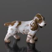 Cockerspaniel, standing looking attentively, Bing & Grondahl figurine no. 2...