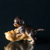 Golden Retriever and rottweiler puppies playing, Royal Copenhagen dog figur...
