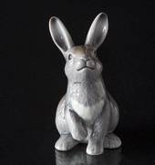 Royal Copenhagen Annual Figurine 2019, Rabbit