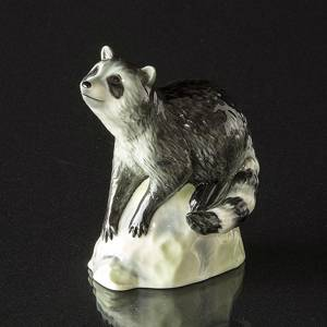 Racoon on Rock looking up, Royal Copenhagen figurine | No. 1249057 | Alt. 1249057 | DPH Trading