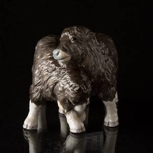 Two Musk ox calves playing, Royal Copenhagen figurine | No. 1249326 | DPH Trading