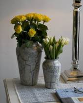 Beautiful vases in many shapes and colours