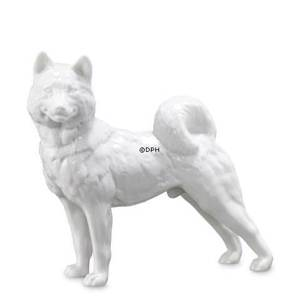 Sibirian Husky, Royal Copenhagen dog figurine