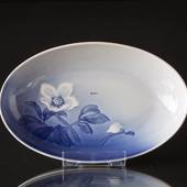 Oval dish Service Christmas rose 22 cm