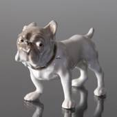 Small Bulldog looking suspicious, Bing & Grondahl dog figurine