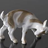 Goat butting, Bing & Grondahl figurine No. 1699