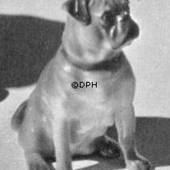 Sitting Pug, Bing & Grondahl dog figurine