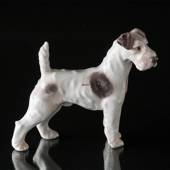 Wirehaired Terrier, Bing & Grondahl dog figurine No. 1998