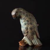 Parrot looking down to the side, Bing & Grondahl stoneware bird figurine
