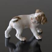 Pointer puppy chasing its tail, Bing & Grondahl dog figurine nr. 2026