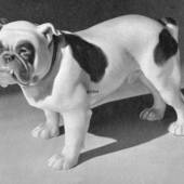 English Bulldog, Bing & Grondahl dog figurine