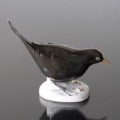 Blackbird sitting low, Bing & Grondahl bird figurine No. 2405