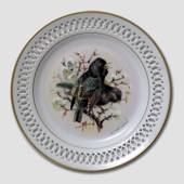 Bing & Grondahl Plate, Songbirds, Starling