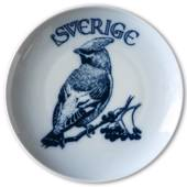 Swedish Stamp plate with Waxwing, Sweden, drawing in blue, Bing & Grondahl