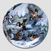Hutschenreuter, Plate in the series Winterbirds