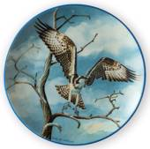 Plate no 2 in the series Nordic Birds of Prey