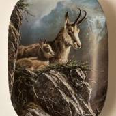 Plate no 6 in the series Animals of our mountains and forests