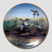 "W S George, Plate no 3 in the series ""Waterbirds in Nature"""