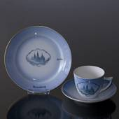 Castle Dinner set Cup and plate with Rosenborg