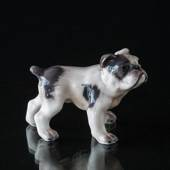 Dog figurine English Bulldog Dahl Jensen No. 1135