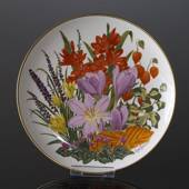 Franklin Porcelain, Wedgwood, Plate with Flowers of the year coll. November