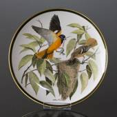 Franklin Porcelain Wedgwood, 1977, Songbirds of the World, Baltimore Oriole
