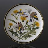 Franklin Porcelain Wedgwood, 1977, Songbirds of the World, European Goldfin...