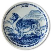 Hansa dog plate no. 1, Collie