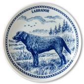 Hansa dog plate no. 3, Labrador