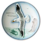 Hummel Goebel Wildlife plate with bird, Seagull