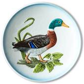 Hummel Goebel Wildlife plate with bird, Mallard duck