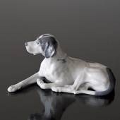 Pointer lying down relaxed, Royal Copenhagen dog figurine