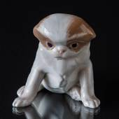 Pekinese dog sitting down, Royal Copenhagen dog figurine No. 1453