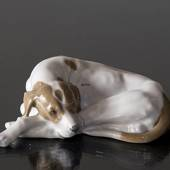 Pointer lying down looking up longingly, Royal Copenhagen dog figurine