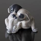Smooth-haired terrier, Royal Copenhagen dog figurine