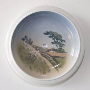 Bowl with Scenery of Old Cottages in Hills, Royal Copenhagen No. 2903-2559 | No. R2903-2559 | DPH Trading