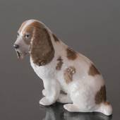 Cocker spaniel sitting down, Royal Copenhagen dog figurine No. 3116