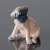 Boxer Puppy sitting, Royal Copenhagen dog figurine No. 3169