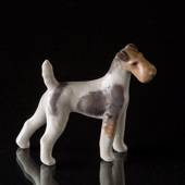 Wire-haired Terrier 8,5cm, Royal Copenhagen dog figurine