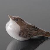 Starling Fledgling looking up, Royal Copenhagen bird figurine No. 3270