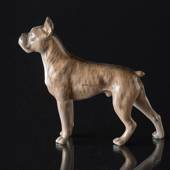 Boxer standing at attention, Royal Copenhagen dog figurine