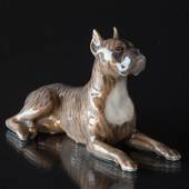 Boxer lying down looking up, Royal Copenhagen dog figurine No. 3635