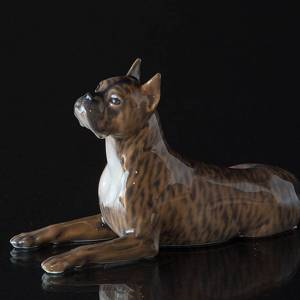 4172d274b02 Boxer lying down looking up, Royal Copenhagen dog figurine | No ...