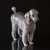 Poodle standing curiously, Royal Copenhagen dog figurine
