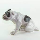 English bulldog, 18x33cm, Royal Copenhagen figurine